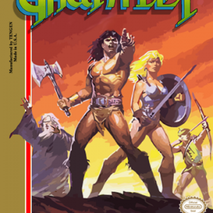 Gauntlet Nintendo Game